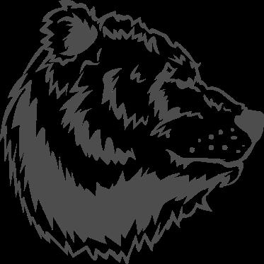 Bear Drawing